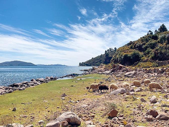 La península de Capachica
