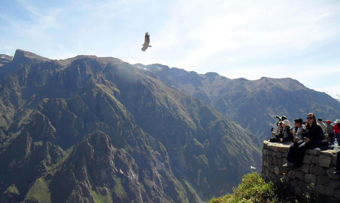 colca canyon full day tours from arequipa